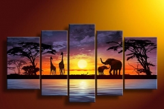 Sunset & Wildlife